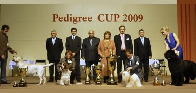Pedigree Cup Nitra, SK