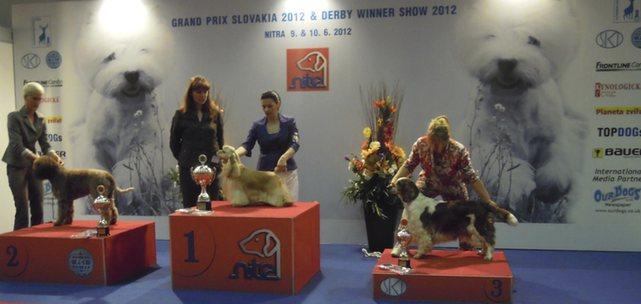 Grand Prix Slovakia, Nitra