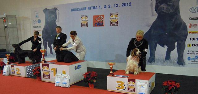 Duocacib Nitra 2012