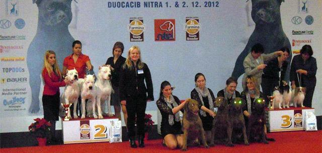 Posudzovanie Duocacib Nitra 2012