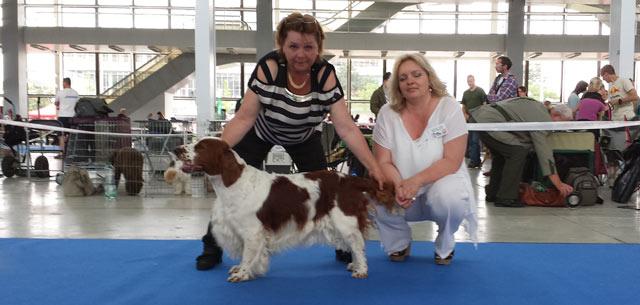 Intercanis Dog Show Brno, CZ