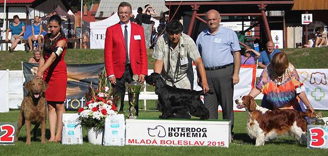 MVP Interdog Bohemia Mladá Boleslav 2015
