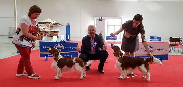 Celoštátna výstava psov Nitra 2016
