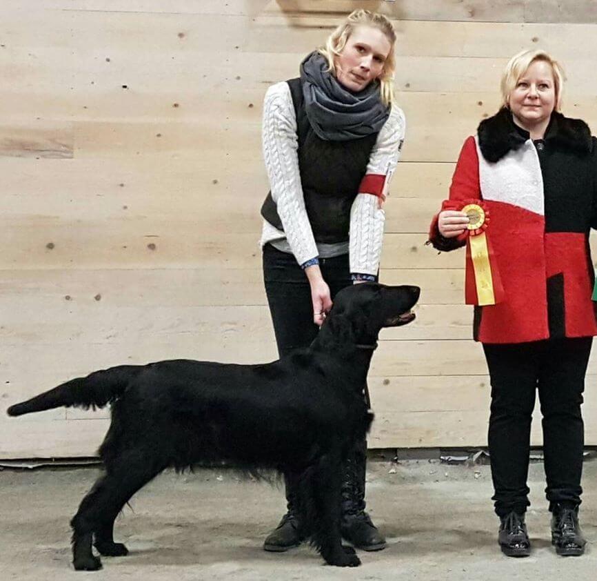 posudzovanie vo Švédsku Moheda 2017