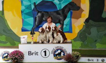 Fantastic day. Regional Dog Show Pezinok