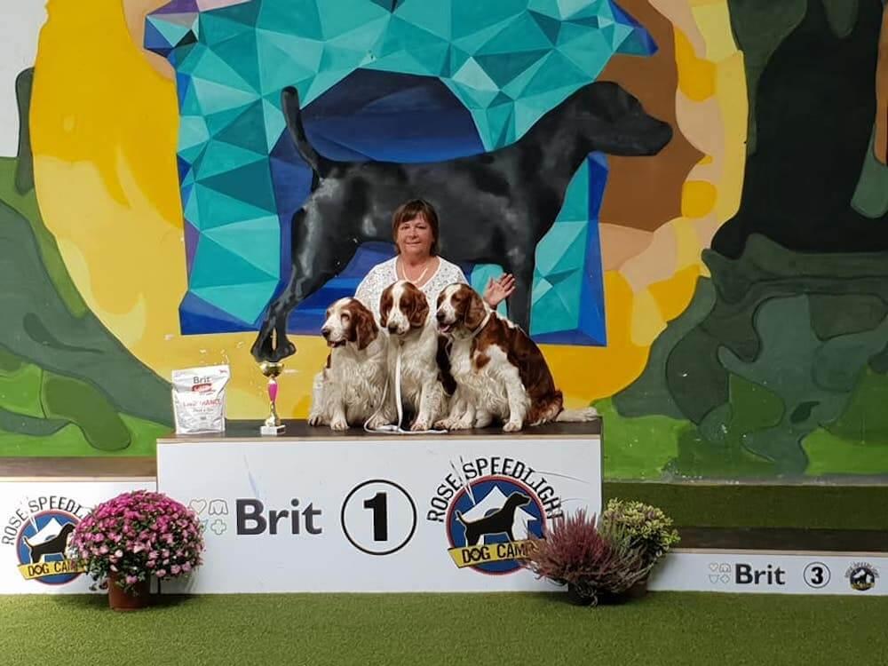 8.9.2018 Fantastic day. Regional dog show Pezinok