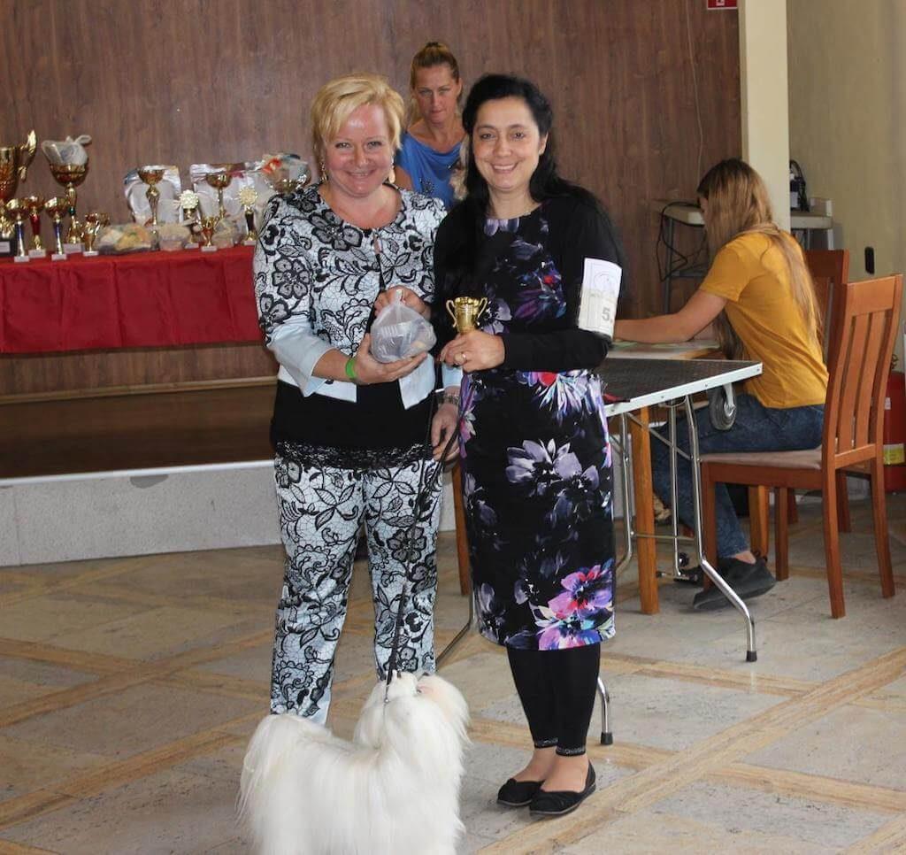 23.9.2018 Špeciálna výstava maltézských psov SPECIAL CUP Kamenný mlyn
