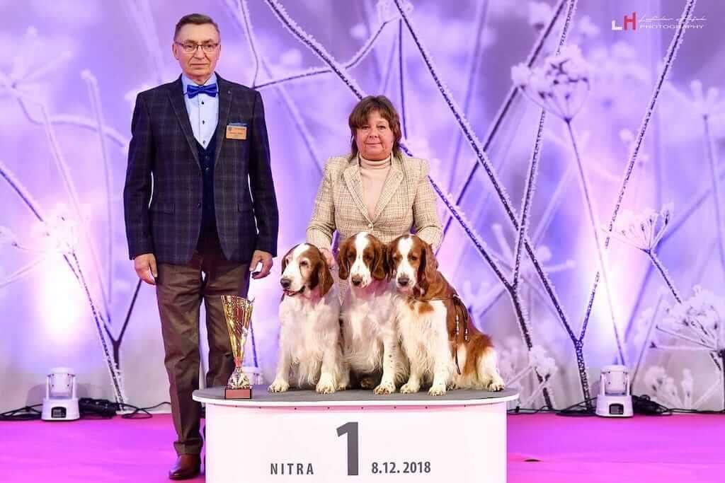Winner-show-Nitra-2018