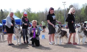 Judging in Finland
