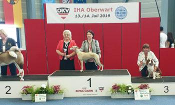 13.7.2019 IHA Oberwart/A